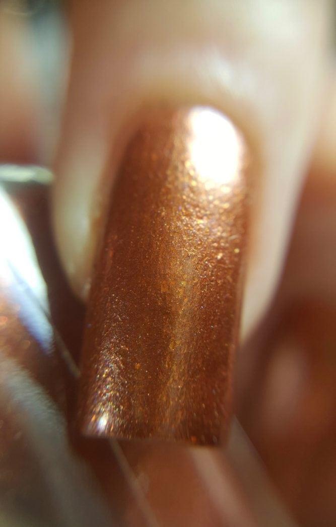 Copper Beech macro