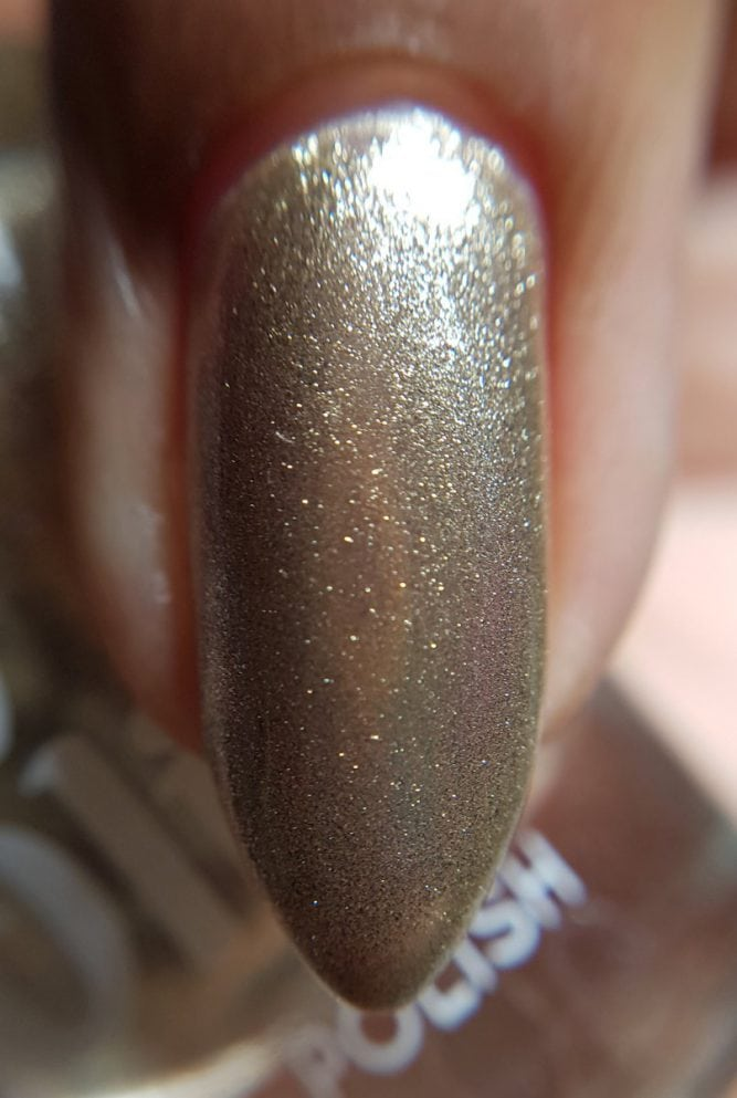 Glass-Slipper-Nail-Macro