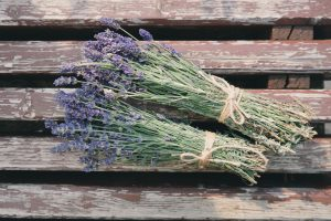 Two bunches of lavender tied with string lying on wooden slated bench